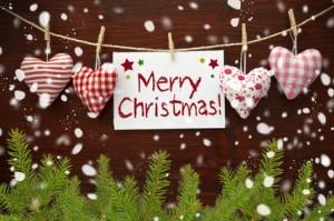 Dermalisse wünscht frohe Weihnachten und ein glückliches neues Jahr!